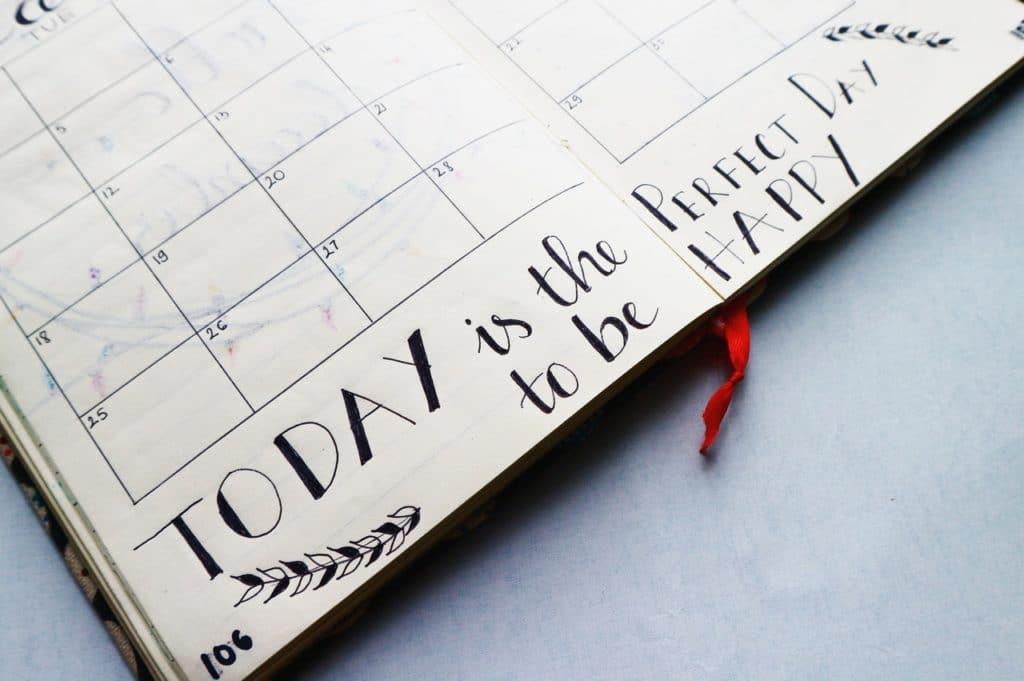 WildFit program - Coaching Session Calendar